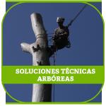 SOLUCIONES-TECNICAS-ARBOREAS