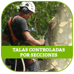 TALAS-CONTROLADAS